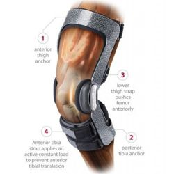 DonJoy Armor with Fourcepoint Ligament Knee Brace-Short