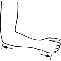 Length Olecranon to metacarpalknuckle point V